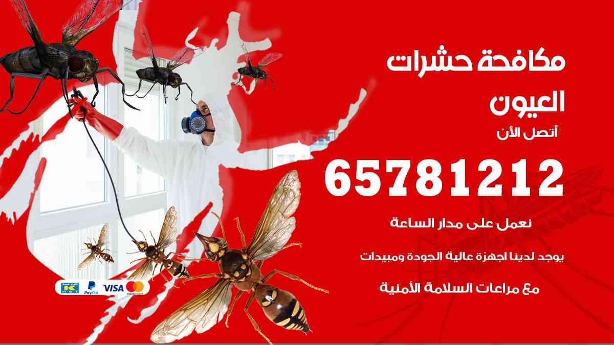 شركات مكافحة حشرات العيون