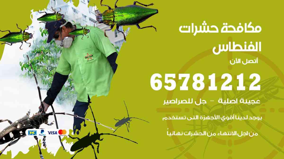شركات مكافحة حشرات الفنطاس