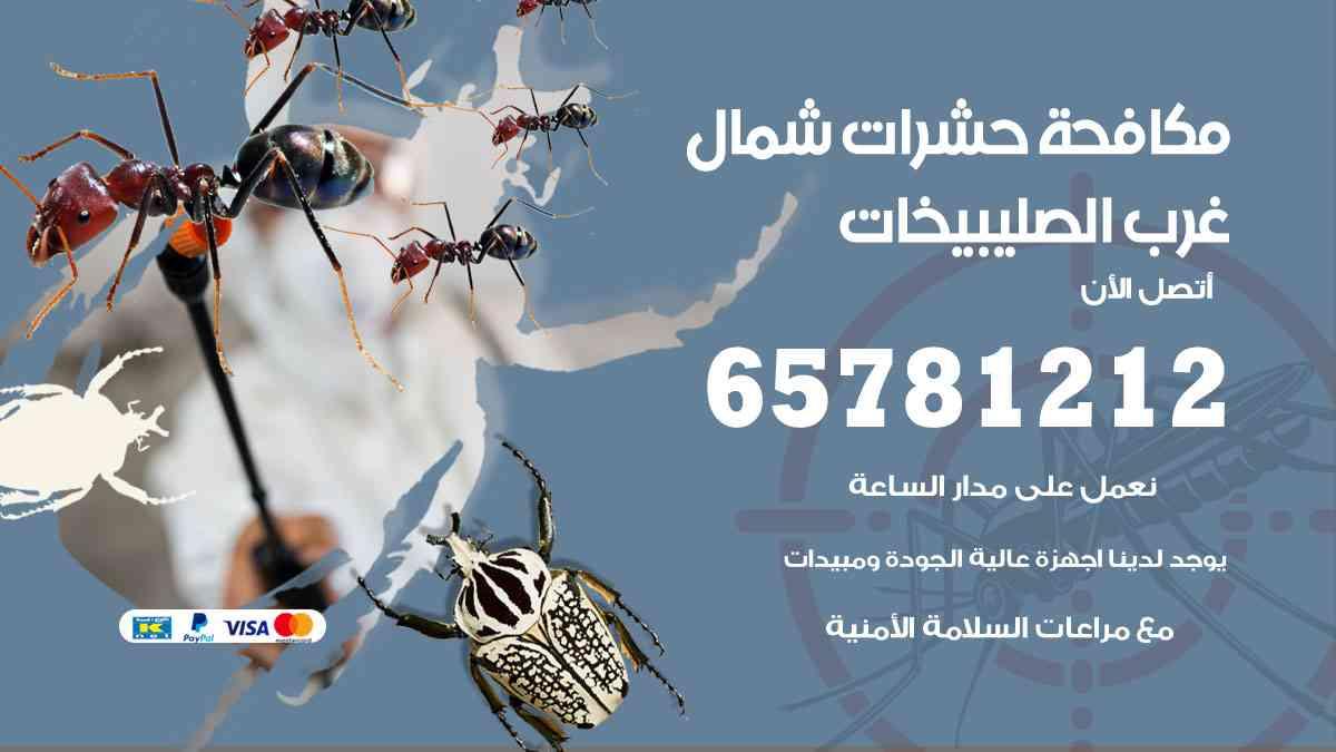 شركات مكافحة حشرات شمال غرب الصليبيخات