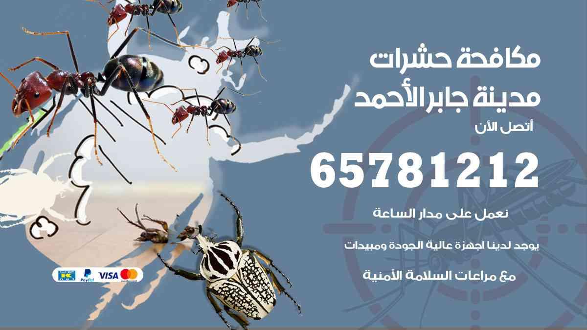 شركات مكافحة حشرات مدينة جابر الأحمد